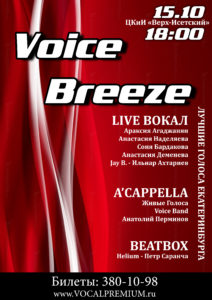 VOICE BREEZE